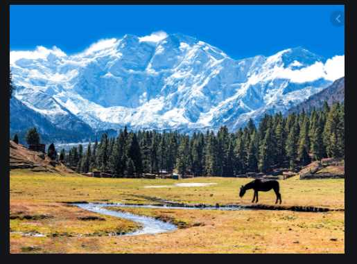 The Height of Nanga Parbat is